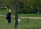 Video: Suns un skrējējs! Kā rīkoties?
