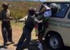 Video: Parka reindžeri Dienvidāfrikā izturas vardarbīgi un salauž roku riteņbraucējam
