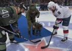 """Video: Pirms """"armijnieku"""" cīņas armijnieku suns veic simbolisko iemetienu"""