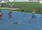 Video: Kaķis iesaistās 100m sprinta sacensībās