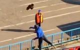 Video: Krievijas futbola mačā uz laukuma uzmet dzīvu gaili