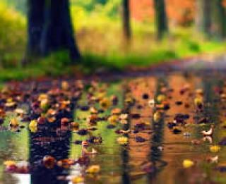 Rudens lietus- arī tajā slēpjas sava burvība