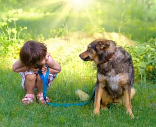 Bērns un mājdzīvnieks – kas jāzina vecākiem?