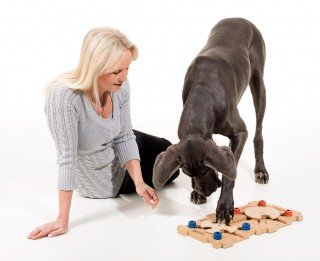 Prātu attīstošas spēles – ne jau tev, bet tavam sunim!