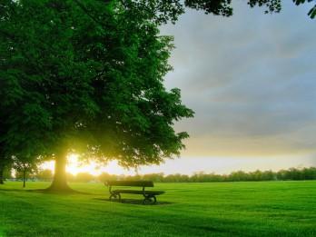 12 veidi, kā sākt rūpēties par šodienu