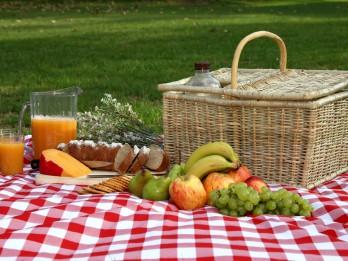 Pieci droša piknika baušļi