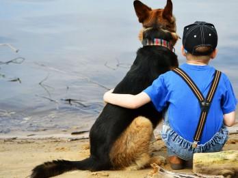 """Izdevniecība """"Avots"""" aprīlī piedāvā Stenlija Korena grāmatu """"Kā saprasties ar suni"""""""
