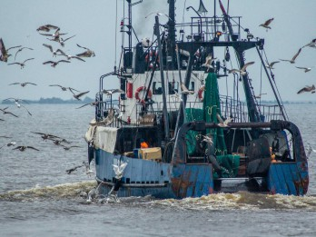 Kino operators Ivars Seleckis un zvejnieki par zvejniecību kā dzīves aicinājumu