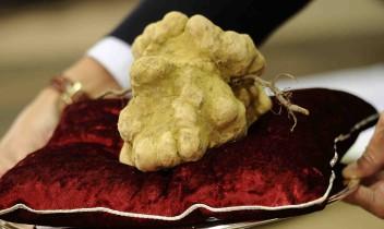TOP 10 pasaulē dārgākās gardēžu maltītes, kas maksā veselu bagātību