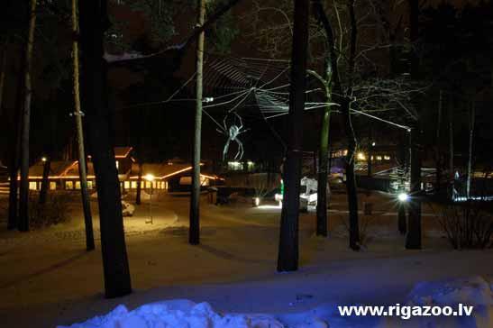 Zoodārzā sākas Ziemassvētku noskaņās tērptās Ziemas naktis