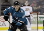 """Balcers atzīts par AHL kluba """"Barracuda"""" šīs sezonas labāko debitantu"""