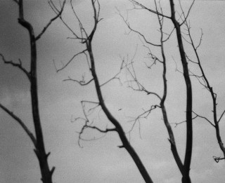 "Lauras Igoveņas un Ģirta Reinika fotoizstāde ""Vanishing Point"" LLMC Ofisa galerijā"