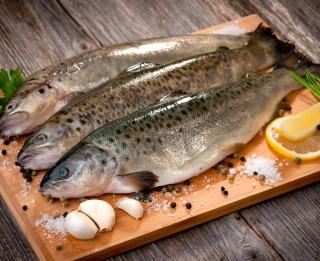 Padomi, gatavojot zivju ēdienus