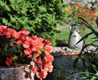 """Video: #4 """"12 dārzu maģija"""" – Kas īpašs Vēžu dārzā?"""